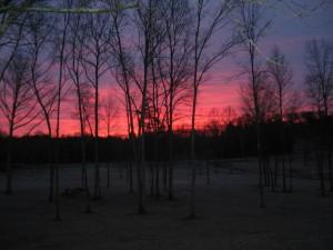 Eskew Homestead Sunrise