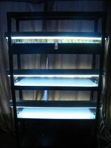 Growing Light Shelf Unit